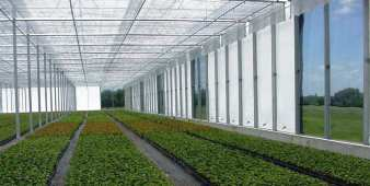 greenhouse wall shading