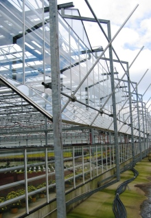 greenhouse wall